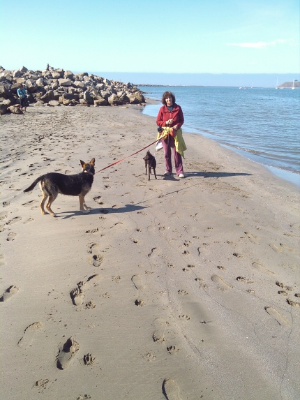 Cassi And Copernicus 9-22-2012.jpg