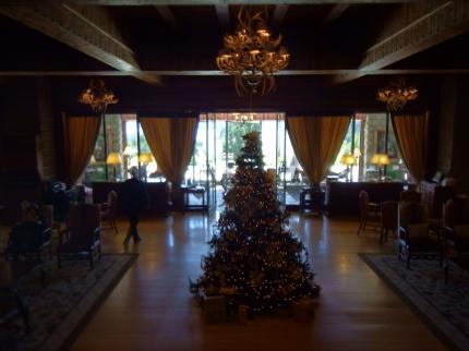 Christmas Tree At The Llao Llao Hotel 2014.JPG